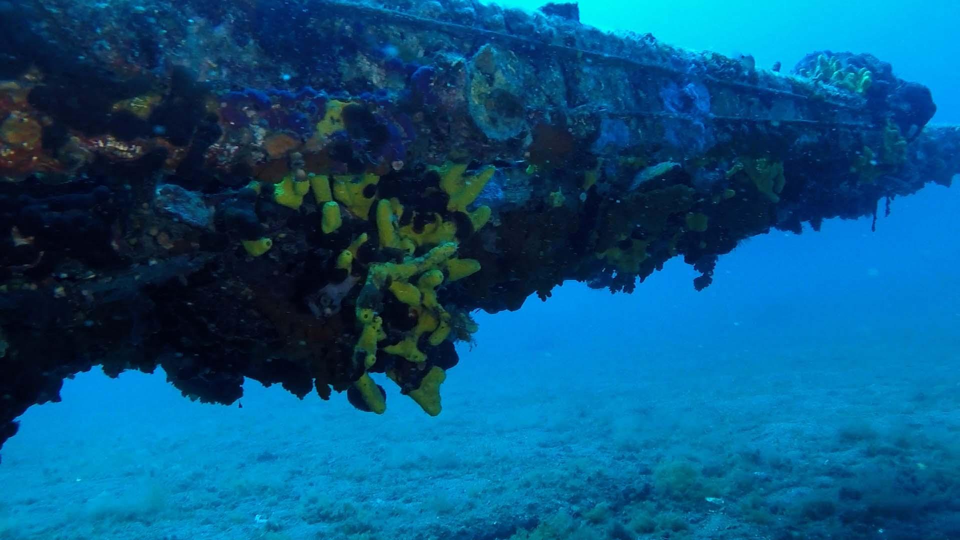 Junker 88 di Santa Caterina ala destra