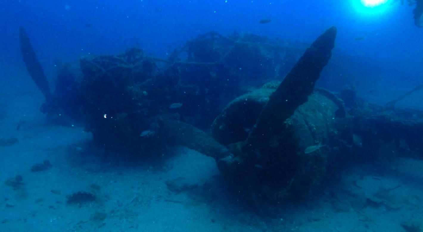 Il BR20 è uno dei relitti meglio conservati dell'intero Mar Mediterraneo