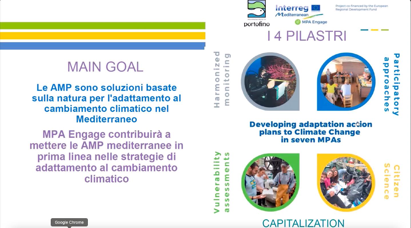 MPA-Engage: gli effetti dei cambiamenti climatici. I 4 pilastri.