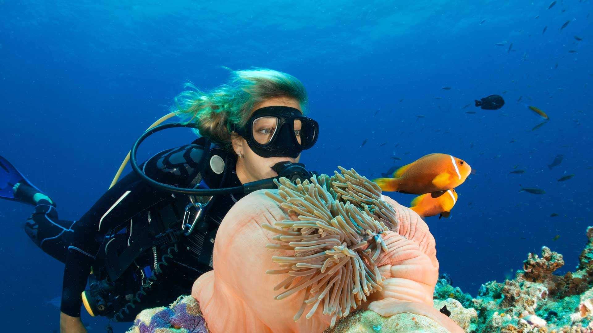 Le immersioni curano i pazienti affetti da stress post traumatico