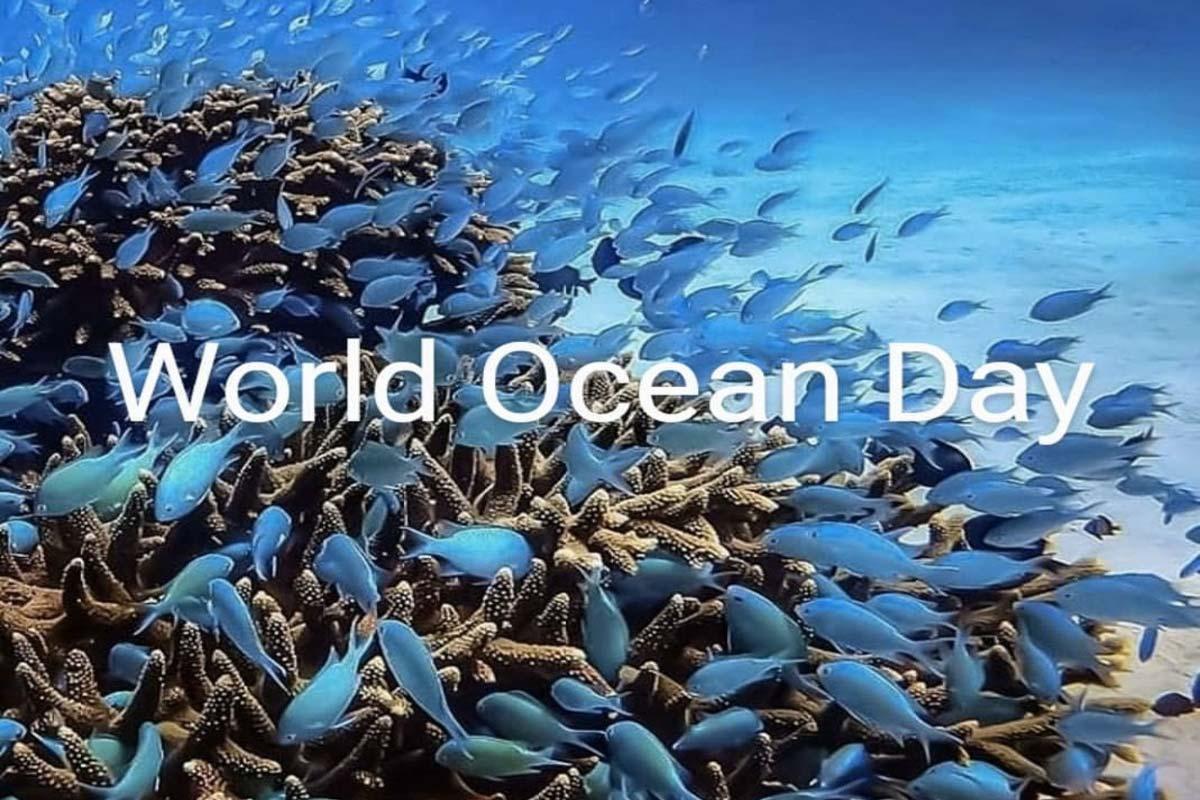 L'intelligenza artificiale a salvaguardia degli oceani